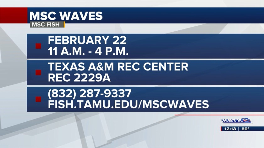 News 3 at Noon: MSC WAVES