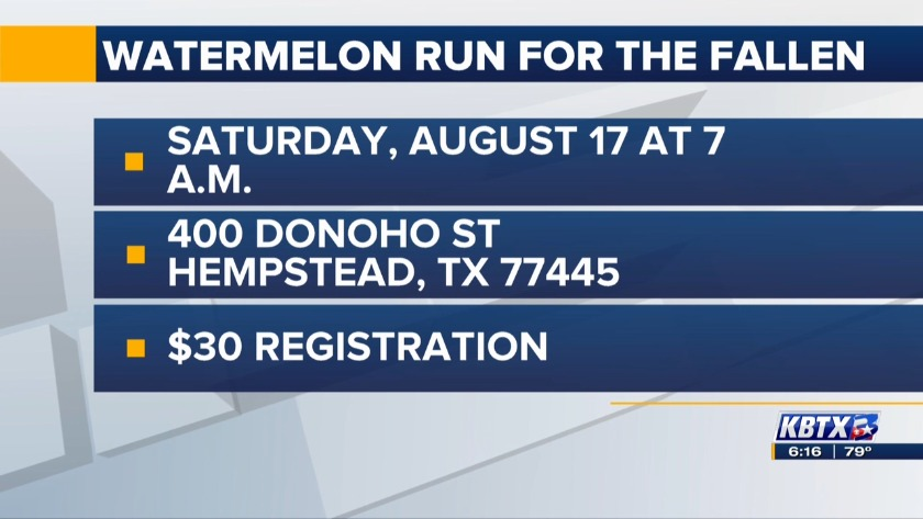 Fun, flyovers and barbecue at Hempstead's Watermelon Run for