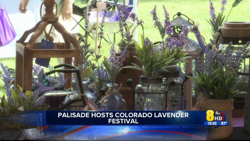 KJCT - Palisade hosts Colorado Lavender Festival