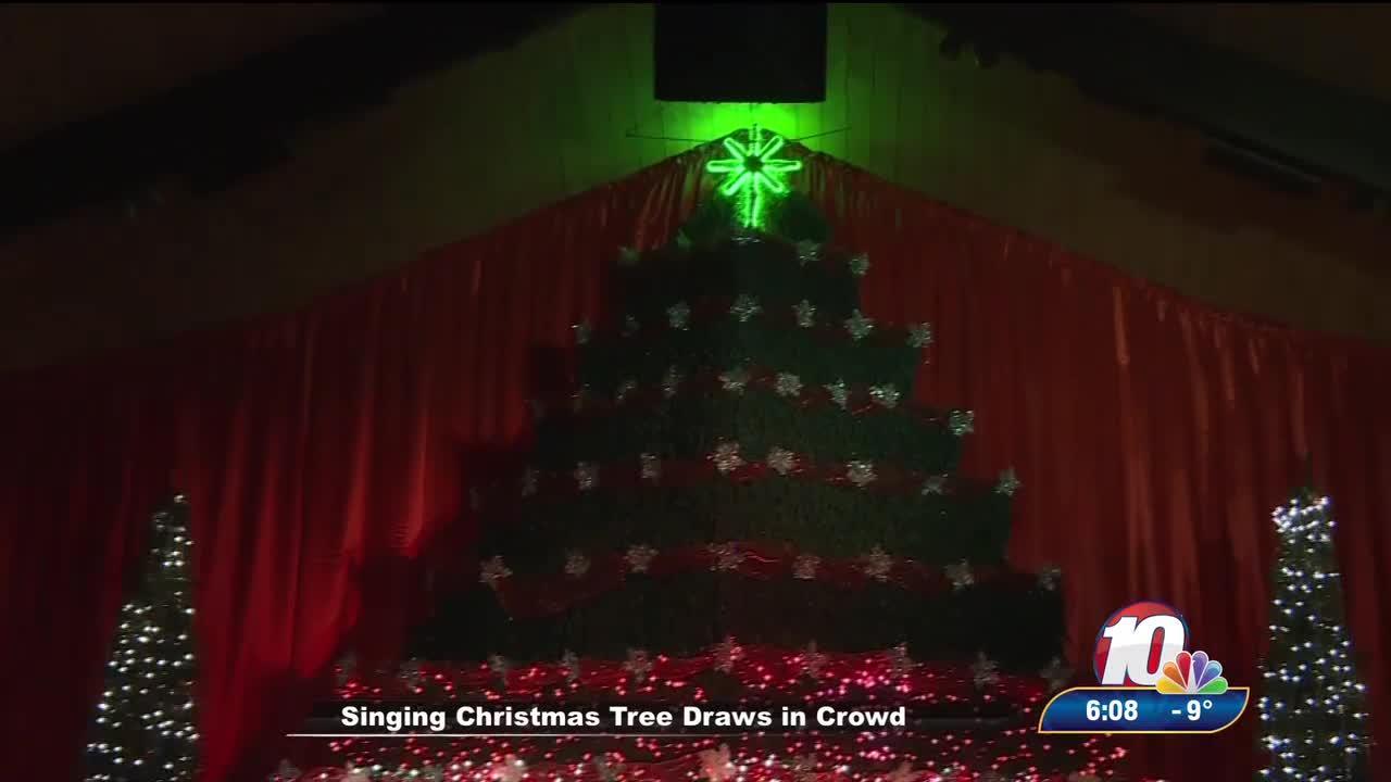 singing christmas tree draws crowd - Singing Christmas Tree Lights