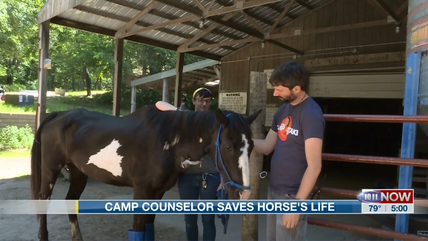 Camp Counselor saves horse's life