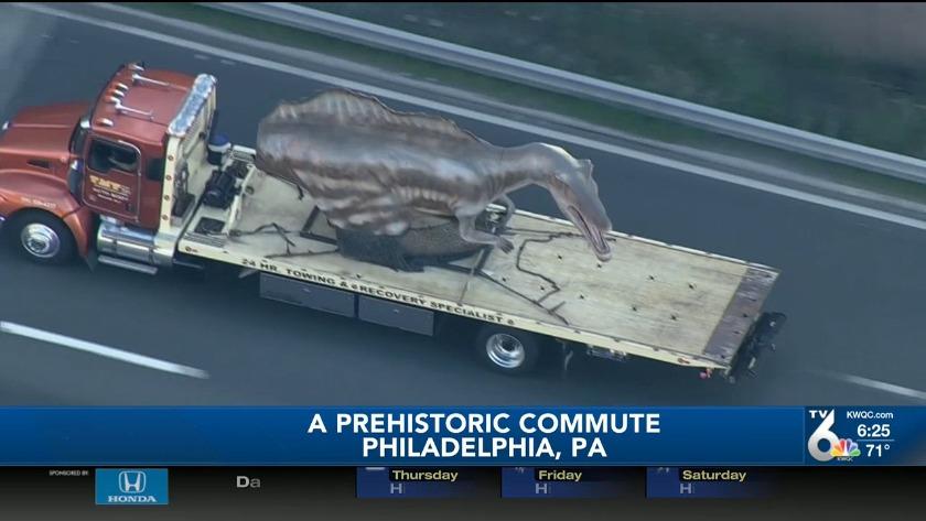Dinosaur races through Philly streets