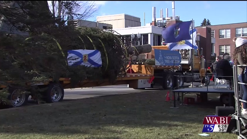 Christmas Tree Bound For Boston Stops For Ceremony In Augusta - Christmas Tree Augusta Maine