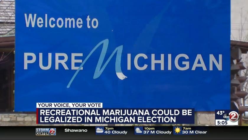 VIDEO: Recreational marijuana on Michigan's ballot