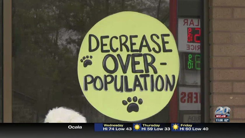 Marion County Animal Clinic Offers Free Services For World Spay Day