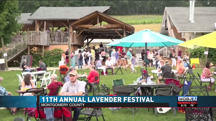 Lavender festival returns