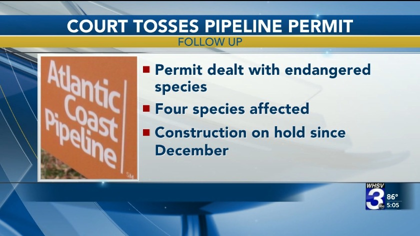 Appeals court vacates key Atlantic Coast Pipeline permit on us federal judicial districts map, us federal district court map, us federal circuit map,