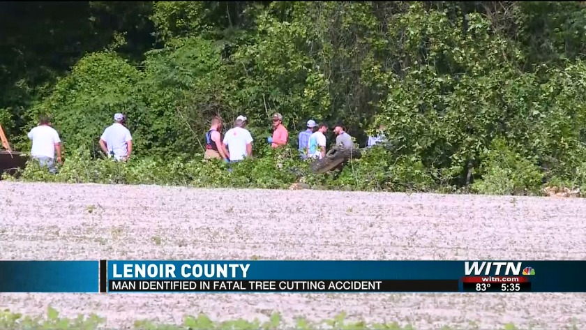 FIRST ON WITN: Victim identified in fatal tree cutting accident