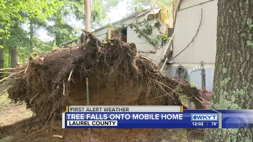 WATCH Tree falls on Laurel County mobile home