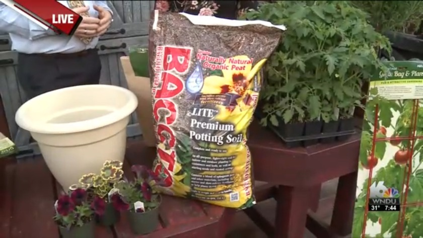 Spring Gardening Tips From Lintonu0027s Enchated Gardens