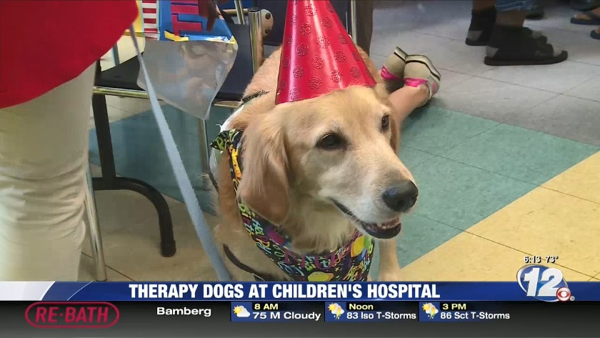 Therapy Dog Turns Four At CHOG