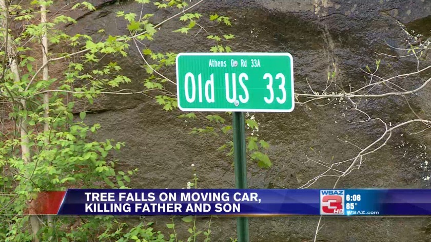 UPDATE   Tree falls on moving car, killing father and son