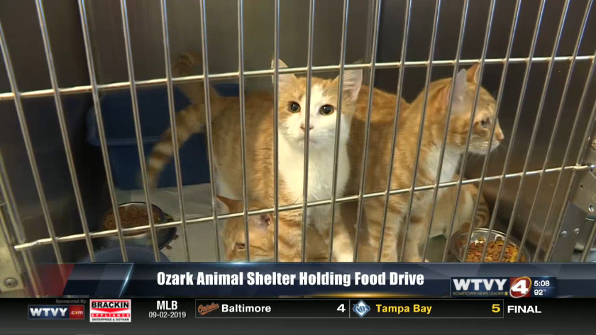 Animal shelter collects human-food