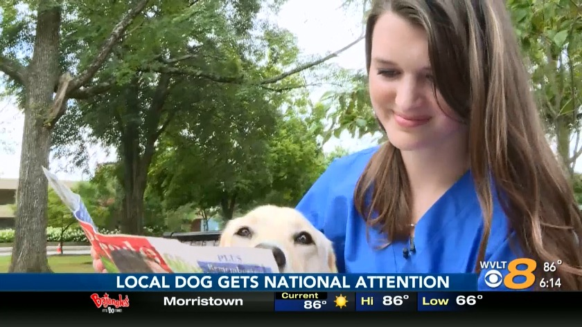 UT student, service dog gaining national attention